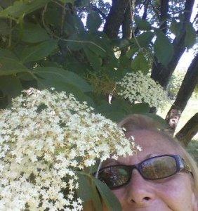 fiorime